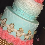 Cake show_blue and pink