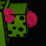 cake show_green and pink